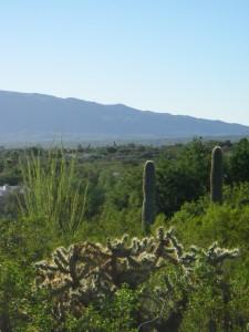 Tanque Verde Valley