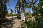 Luxury Homes in Central Tucson