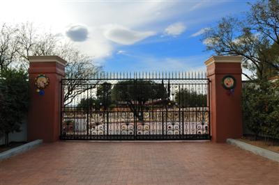 Italian Vineyard in Tucson