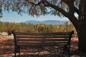 3811 N Cherry Creek Place Tucson AZ 85749